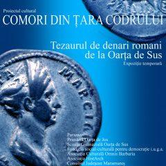 """Tezaurul de denari romani descoperit la Oarţa de Sus se întoarce """"acasă"""""""